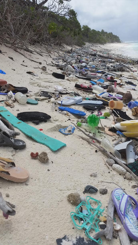Cocos Adaları'nda sıfır atık