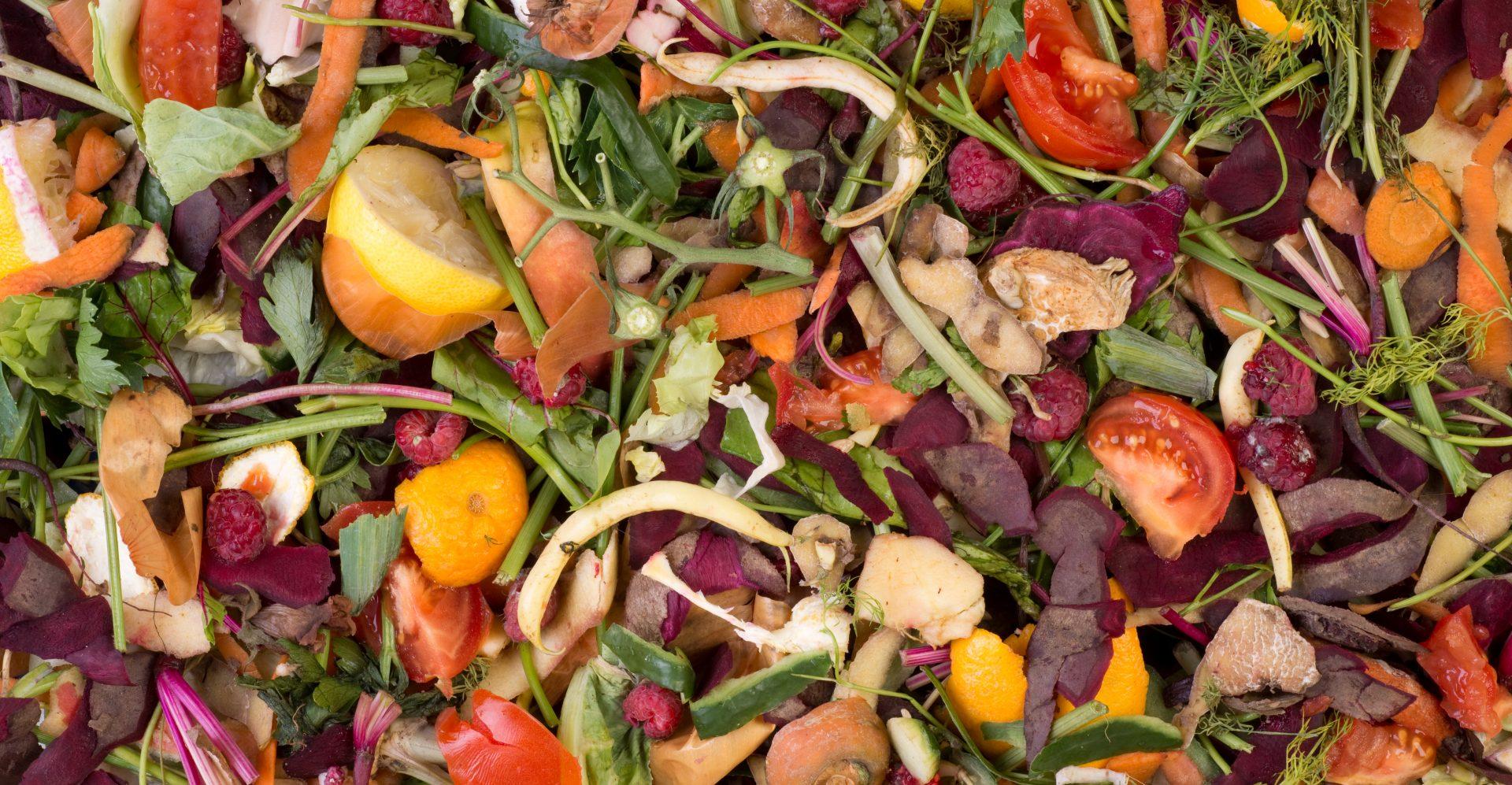 organik atık
