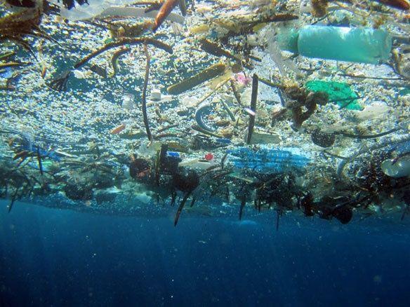 okyanuslardaki plastik