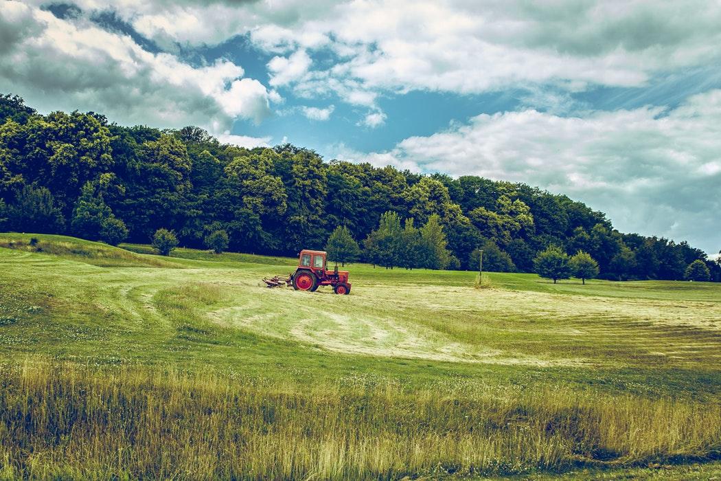toprak kirliliğini önlemek