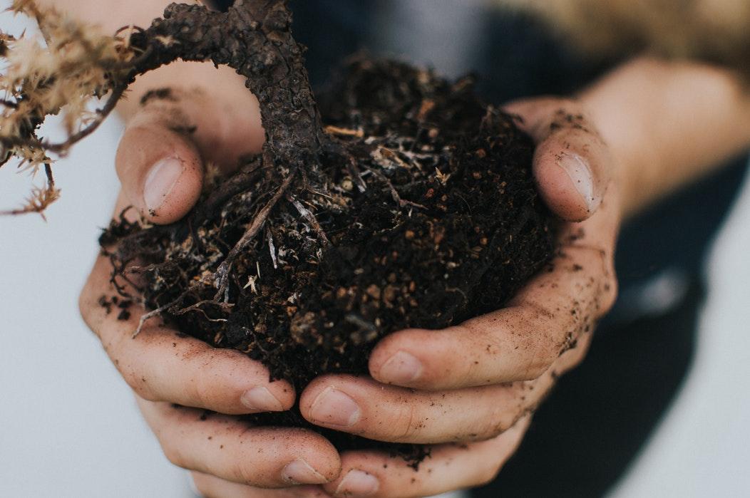 toprak kirliliği