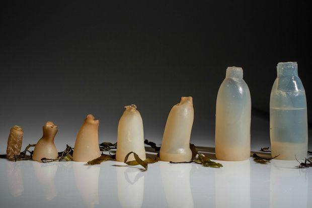 Biyobozunur su şişesi